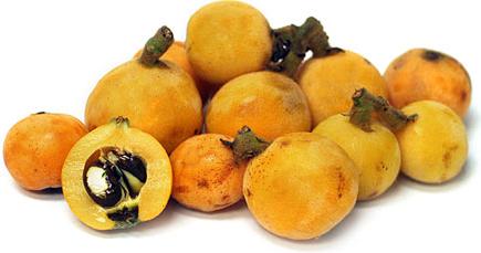 loquats.png